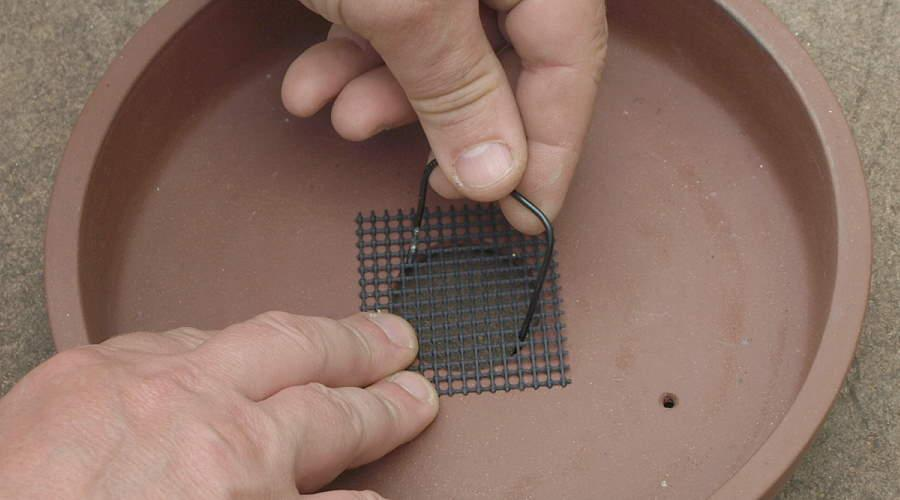 How to cover the drainage hole of a bonsai pot